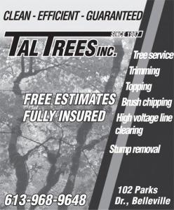 tall tales ad 1