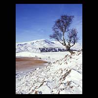 snowy-scotland.jpg