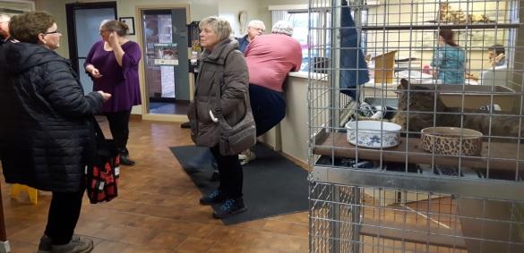 London Animal Care Centrejpg
