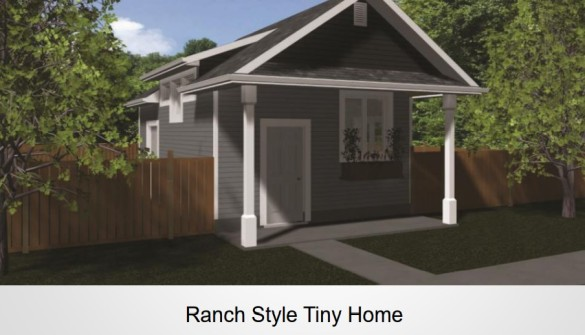 Project Tiny Hope ranch style home